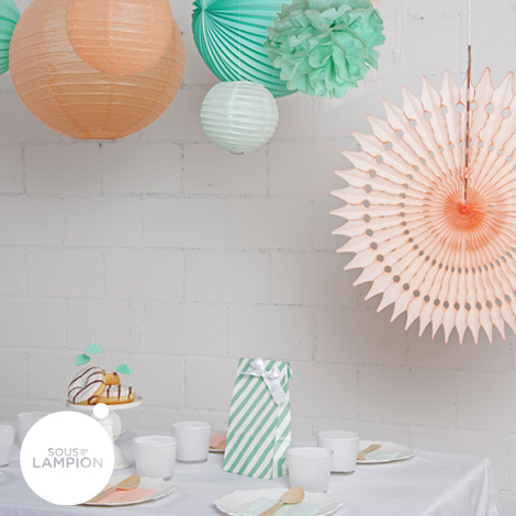 mint peach party decor set