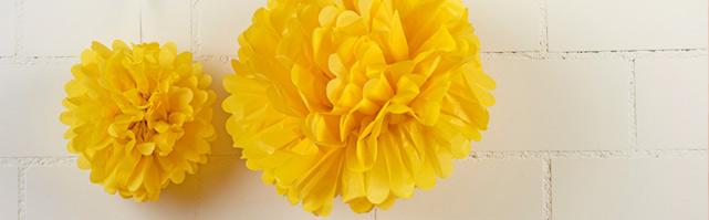 Paper Pompoms & Flowers